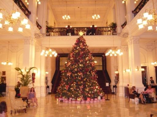 ホテルロビーのクリスマスツリー.jpg